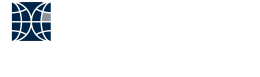 Radin Capital Partners Inc. company